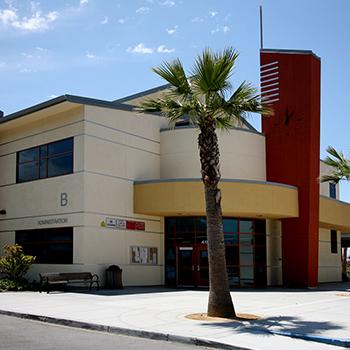 Don Callejon School