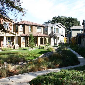 Autumn Terrace at College